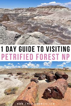 If you are taking a road trip through Northern Arizona, make a point to visit the Petrified Forest! See the vibrant shades of red, purple, blue and grey colors when exploring the Painted Desert, Blue Badlands, tons of petrified wood, and a section of Route 66. Discover the best things to do in Petrified Forest National Park with this 1 day guide! #arizona #arizonatravel #petrifiedforest #petrifiedforestnationalpark #ustravel Road Trip Packing, Packing List For Travel, Travel Usa, Arizona Road Trip, Arizona Travel, Petrified Forest National Park, American National Parks, Toddler Travel, Adventure Activities