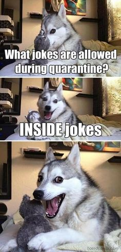 Super Funny Memes, Crazy Funny Memes, Really Funny Memes, Funny Puns, Funny Relatable Memes, Haha Funny, Lol, Bad Puns, Funny Humor