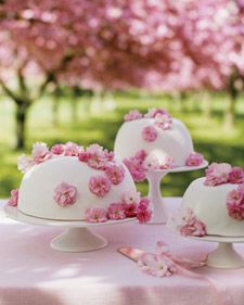 Cherry-Blossom Princess Cake, an old Swedish wedding standby, is normally covered in green marzipan. In our decidedly floral interpretation of the confection, we cloaked the dome-shaped cake in pink fondant and topped it with a smattering of real cherry blossoms, some of which have been coated with sugar. Inside, luscious layers of almond-flavored genoise, cherry jam (a nod to the sakura theme), pastry cream, and whipped cream in -- what else? -- pink await guests. If you're having a…