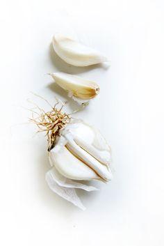 blanc   white   bianco   白   belyj   gwyn   color   texture   form   weiss   Garlic