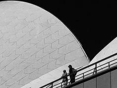 Sydney's opera curves