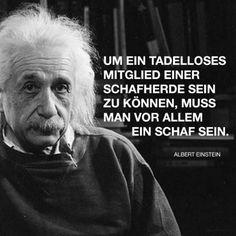 Die 7 besten Bilder von Sprüche von Albert Einstein | German