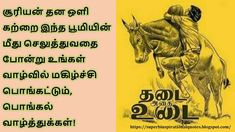 Tamil pongal wishes Pongal Wishes In Tamil, Happy Pongal Wishes, Pongal Celebration, Cute Baby Boy Images, Best Quotes, Funny Quotes, Morning Images, Are You Happy, Cute Babies