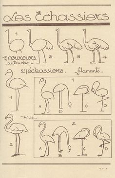 animaux 34 how to draw flamingoshow to draw flamingos Drawing Lessons, Drawing Techniques, Drawing Tips, Drawing Sketches, Art Lessons, Sketching, Contour Drawing, Bird Drawings, Easy Drawings