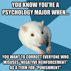 I only find this funny since I am currently taking a break from studying for Psych and this is one of the topics we are studying... Negative reinforcement is the removal of unpleasant stimuli!! Punishment is either the presentation of unpleasant stimuli or the removal of pleasant stimuli... get it right people ;)