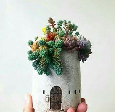 House Plants Decor, Plant Decor, Diy Arts And Crafts, Clay Crafts, Hanging Plants, Indoor Plants, Succulents Garden, Planting Flowers, Do It Yourself Inspiration