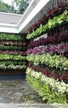 Vertical Gardens The recent trend of vertical gardening is becoming increasingly rife as gardeners channel their inspiration to new heights of creativity Vertical Garden Systems, Vertical Herb Gardens, Vertical Garden Plants, Vertical Planting, Vertical Garden Design, Vegetable Garden Design, Diy Garden, Garden Projects, Garden Landscaping