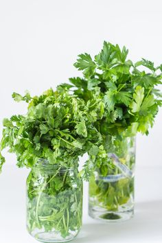I can keep herbs fresh for weeks! Keeping Herbs Fresh in the Fridge - On Purpose Home