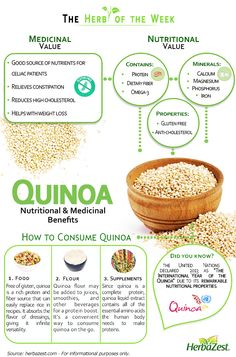 Discover Quinoa remarkable nutritional properties it will amaze you. Discover Quinoa remarkable nutritional properties it will amaze you. Nutrition Education, Health And Nutrition, Health And Wellness, Health Tips, Quinoa Nutrition, Nutrition Activities, Nutrition Store, Nutrition Month, Nutrition Classes