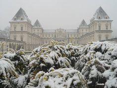 Castello del Valentino 30-01-2014...finalmente Torino s'inbianca