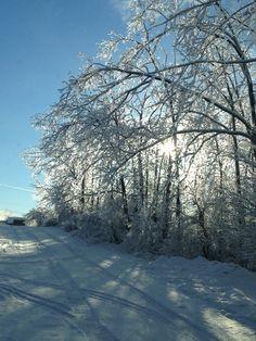 Ice storm 2103