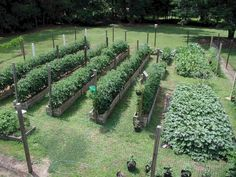 Organic Gardening Ideas 20 Inspiring Homestead Farm Garden Layout and Design Ideas