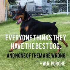 We love this quote! Find your very own best dog (or cat) by adopting a shelter pet today!