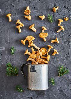 Kantarelli (kanttarelli) on varmasti suosituin metsäsieni makunsa ja helpon tunnistettavuutensa vuoksi. Tässä parhaat reseptit kantarellien hyödyntämiseen. Carrots, Vegetables, Food, Essen, Carrot, Vegetable Recipes, Meals, Yemek, Veggies