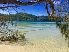 Happy hump day boys & girls. I had the hard task of swimming in here today. I know poor me  #ausfeels #australia #australia_oz #australiagram #aussiephotos #aussielife #discoverqueensland #exploringaustralia #goldcoast #goldcoast4u  #igshotz #igersgoldcoast #ig_australia  #igs_oceania #ilovegoldcoast #loveyouqueensland #moregoldcoast #mycapture #myview #queensland #radtravel #socialifeaustralia #thisisqueensland #visitqueensland #visitgoldcoast #wow_australia #amazingview #fishing…