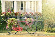 Bicicleta roja del vintage con las flores en el jardín