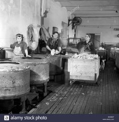 Download this stock image: Czechoslovakia, Prague  1947. Women wash clothes in big laundry rooms using old fashion machines. CTK Vintage Photo - BX5BEP from Alamy's library of millions of high resolution stock photos, illustrations and vectors.