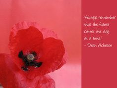 The 18 best poppies images on pinterest in 2018 poppies floral poppy flower quotes google search mightylinksfo