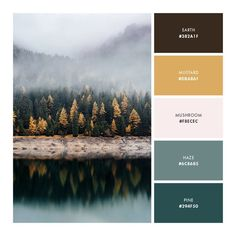 How to create a color palette for your brand (plus five palettes you can steal!) — Samantha Madeo Design How to create a color palette for your brand (plus five palettes you can steal! Color Palette For Home, Green Colour Palette, Nature Color Palette, Neutral Color Palettes, Design Palette, Vintage Color Palettes, Bedroom Color Palettes, Website Color Palette, House Color Palettes
