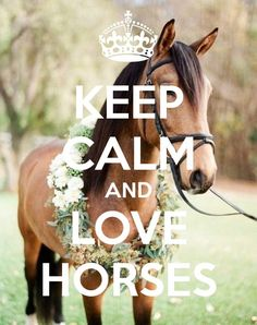 'KEEP CALM AND LOVE HORSES' Poster: