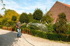 QFS specialist in Insectenbestrijding Campaign, Sidewalk, Medium, Side Walkway, Walkway, Walkways, Pavement, Medium Long Hairstyles