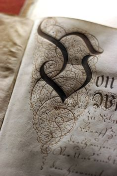 Victorian calligraphy and stylistic flourish in walnut ink.