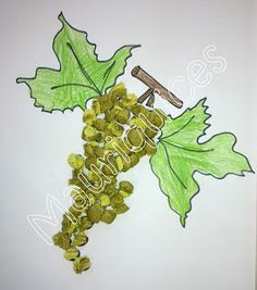 Mauriquices: Fui à vinha e na videira vindimei uvas verdes!