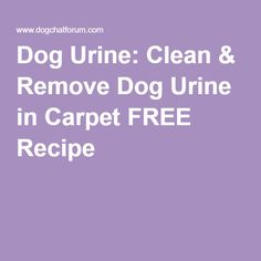 Removal of Cat Urine from carpet. Get rid of cat urine odors & pet urine odors & stains. Natural cleaning products used Cat Urine Remover, Urine Odor, Dog Urine, Homemade Cleaning Products, Cleaning Recipes, Natural Cleaning Products, Cleaning Tips, Cleaning Solutions, Dog Pee Smell