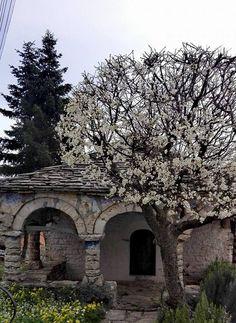 Greece, Outdoor, Greece Country, Outdoors, Outdoor Living, Garden