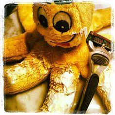 "@oltreilpassaparola's photo: ""Certo che radersi 8 zampe è una bella rottura. Buona giornata!"""