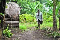 Casamance: Accusations graves contre l'Etat du Sénégal par le comité d'initiative pour le déminage Casamance, Grave, Outdoor Structures, Accusations, Languages