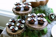 Adorable owl cupcakes!