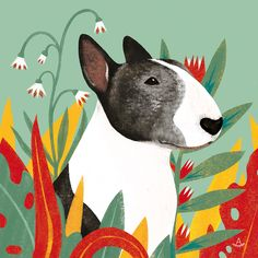 Uplifting So You Want A American Pit Bull Terrier Ideas. Fabulous So You Want A American Pit Bull Terrier Ideas. English Bull Terriers, Bull Terrier Dog, Dog Illustration, Illustrations, Inspiration Artistique, Dog Paintings, Dog Art, Animal Drawings, Gouache