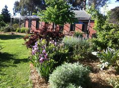 Tara Bed and Breakfast, a Castlemaine B&B | Stayz