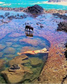 Kauai tide pools, Kapaa