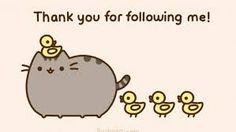Ducklings following pusheen