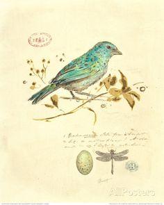 Vintage Illustration Gilded Songbird I de Chad Barrett - Art And Illustration, Illustrations, Vintage Images, Vintage Art, Chad Barrett, Art Encadrée, Art Carte, Ouvrages D'art, Bird Prints
