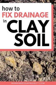 Gardening in dense clay soil is challenging! After years of trying to garden in compacted clay soil with poor drainage, here are the new steps I'm taking to finally learn how to amend my clay soil and create the garden I've been dreaming of. Front Flower Beds, Raised Flower Beds, Garden Crafts, Garden Projects, Lawn Soil, Fall Plants, Planting Vegetables, Plant Growth, Landscaping Tips