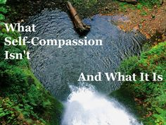 What Self-Compassion Isn't (and What It Is) #1000Speak - a comprehensive post from Yvonne Spence!