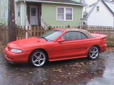 Check out this Mustang for sale