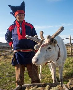 Picture of a Sami native with reindeer in Norway