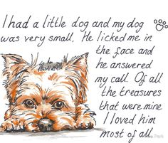 I had a little dog…Yorkie. • Buy this artwork on apparel, kids clothes, stickers, and more.