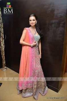 Picture of Diya Mirza
