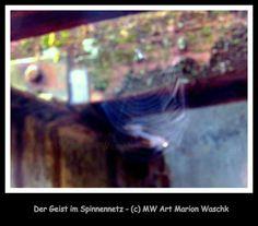 Fotgrafie, MW Art Marion Waschk, Geist, Spinnenetz, Holzbalken, Foto, Fotobearbeitung, Kunst, Art, Fotograf, Passbilder, Hagen, NRW, delirious dark,