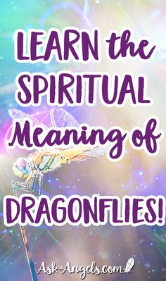 Discover 11 dragonfly meanings to help you decode dragonfly symbolism. Learn about the deeper dragonfly spiritual meaning and what it represents. Dragonfly Meaning Spiritual, Dragonfly Symbolism, Dragonfly Quotes, Spiritual Meaning, Dragonfly Tattoo, Spiritual Guidance, Spiritual Awakening, Card Sentiments, Tatoo