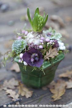 Garden Flow: Autumnal arrangement of bulbs - Exquisite!