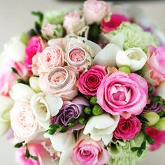 Wedding photography Wedding Photography, Rose, Plants, Flowers, Pink, Plant, Wedding Photos, Roses, Wedding Pictures