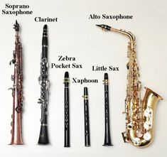 Zebra™ 8 Holes Key-Bb Mini Sax Pocket Saxophone Xaphoon with Alto Mouthpiece Sale - Banggood.com