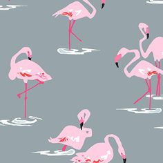 Flamingoes from Andover fabrics available February 2015