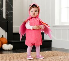 I love the Baby Flamingo Costume on potterybarnkids.com  Didn't get this one for this year maybe next.